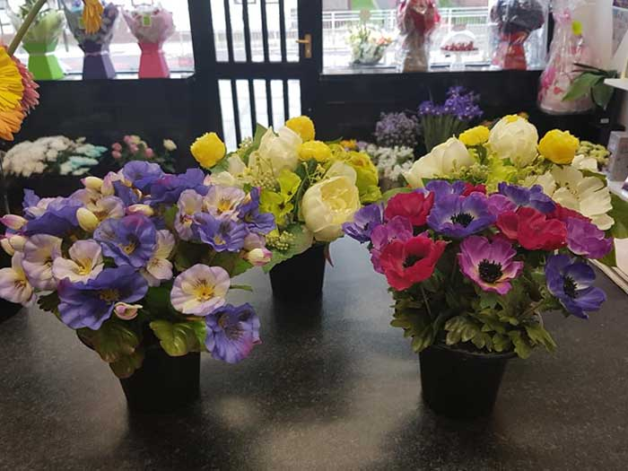 Pots of colourful flowers